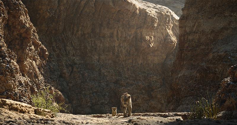 Lion King Shooting